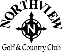 logo N3.png