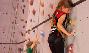Reach New Heights with Pulse Climbing!