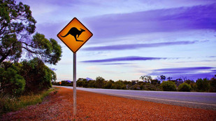 Council joins drive to prevent regional road trauma as part of successful road safety efforts
