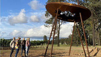 There's so Much More to Discover at Winmark Wines