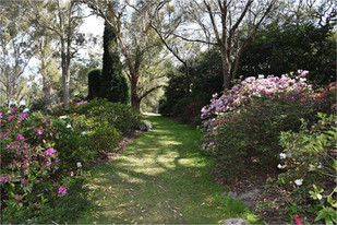 Not For Profit Shoutout - Hunter Region Botanic Gardens