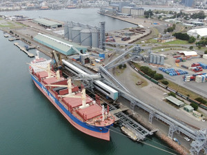 Newcastle wheat shipment first of many as exporters roar back into global markets