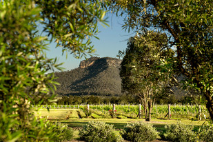 Time to Experience the Hunter Valley