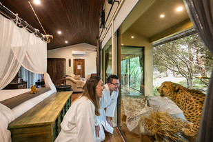 22 Years of Conservation at Australia's National Zoo and Aquarium