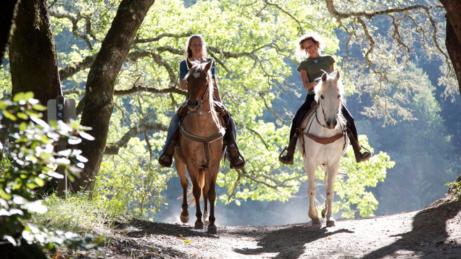 Hunter Valley Horseriding & Adventures
