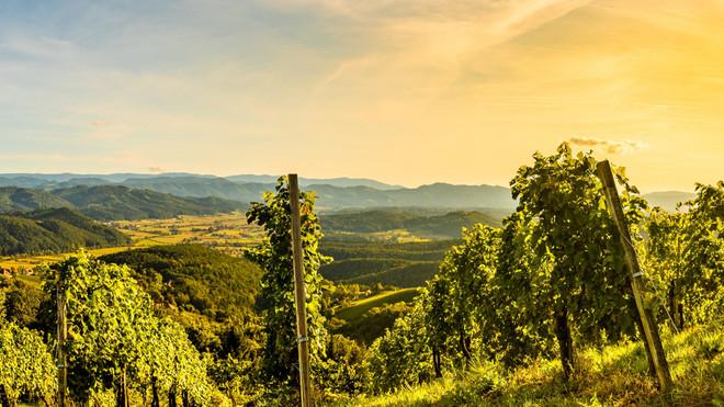 Hunter Valley Wine & Food Month