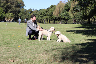 City's four-legged residents to benefit from further off leash area improvements
