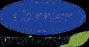 carrier-logo-full.png