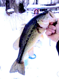 Smallmouth+Bass+Winter+2014