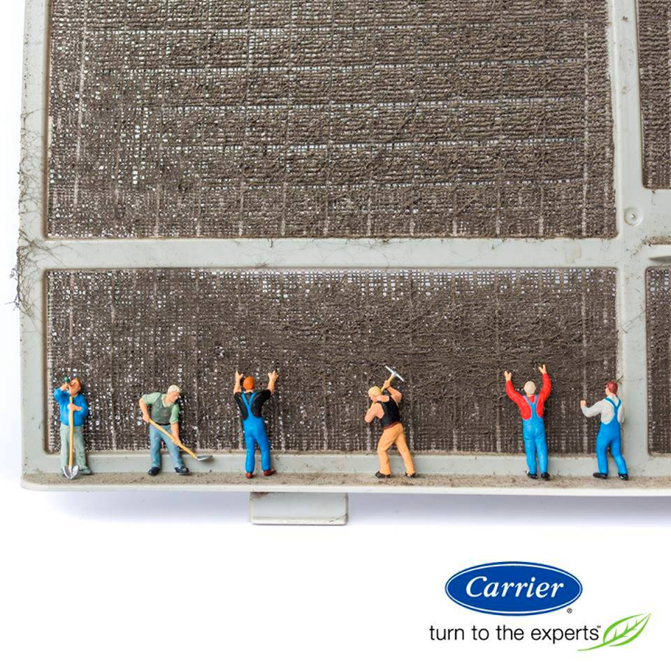 Carrier dirty filter