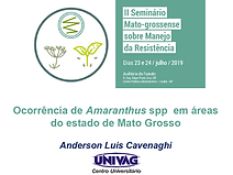 Anderson Luis Cavenaghi - Amaranthus.PNG