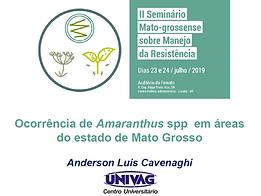 Ocorrência de Amaranthus spp em áreas do estado de Mato Grosso