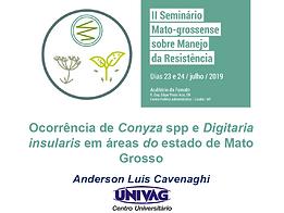 Ocorrência de Conyza spp e Digitaria insularis em áreas do estado de Mato Grosso