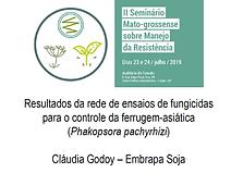 Cláudia Godoy.PNG