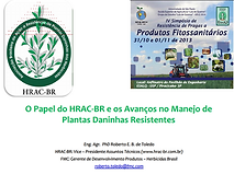 papel do hrac.PNG