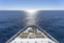 Luxury cruise ship at sea .jpg