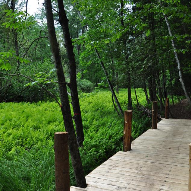 Marsh Bridge.JPG