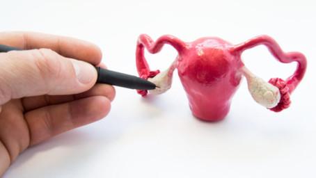 5 Fatos sobre fertilidade que você deve saber