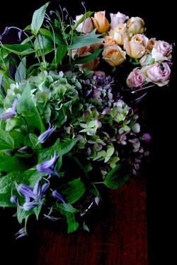 クレマチス&紫陽花