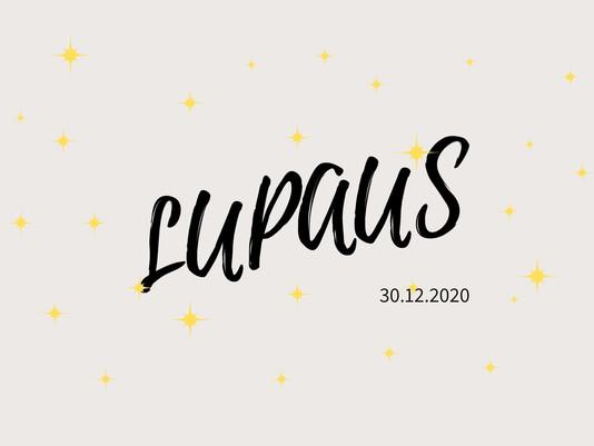 Pätkis LUPAUS, osa 4