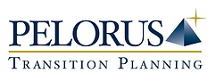Pelorus Transition Planning Logo 4 (002)