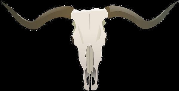longhorn-154617_1280.png