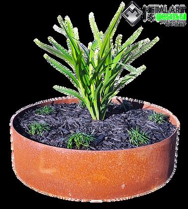Corten planter rings