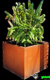 Corten planter box