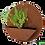 Thumbnail: Circle wall planter