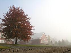 Brouillard manege
