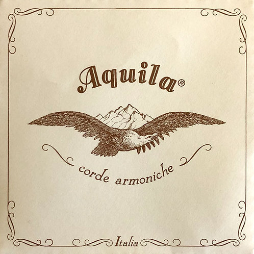 Aquila Saiten aus Rinderdarm