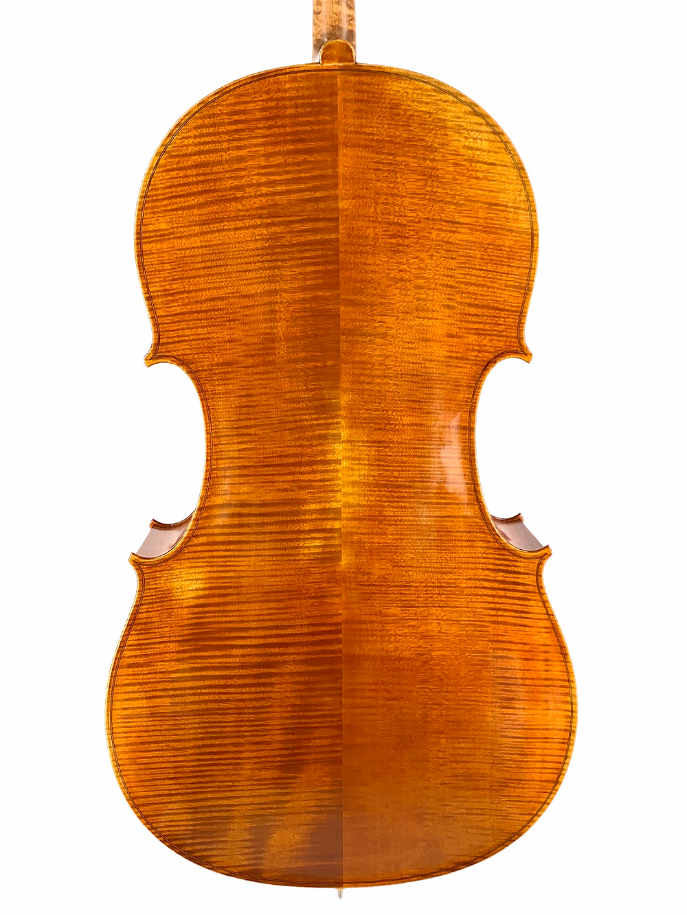 Cello kaufen, Cello mieten, Violoncello, Cello