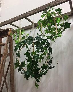 Ivy Orbs.jpg