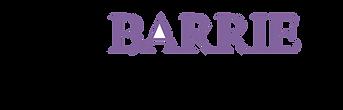 Barrie Dental Arts Logo elements 1.png