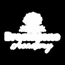 Brookstone Academy Logo White FINAL-01.p