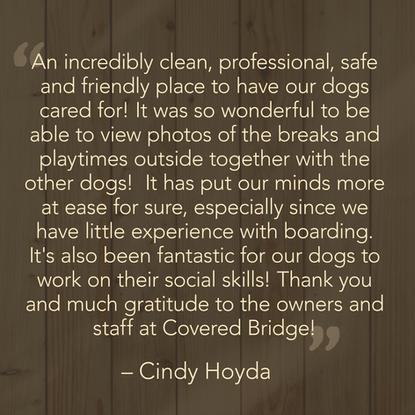 Cindy H. Testimonial