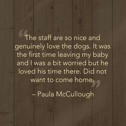 Paula M. Testimonial
