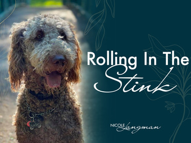 Rolling In The Stink