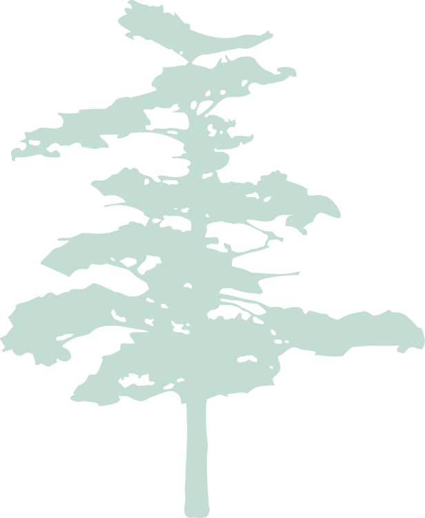 tree.png 2.png