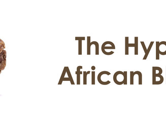 The Hype Around African Black Soap?