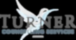 Nicole Turner Logo Design.png