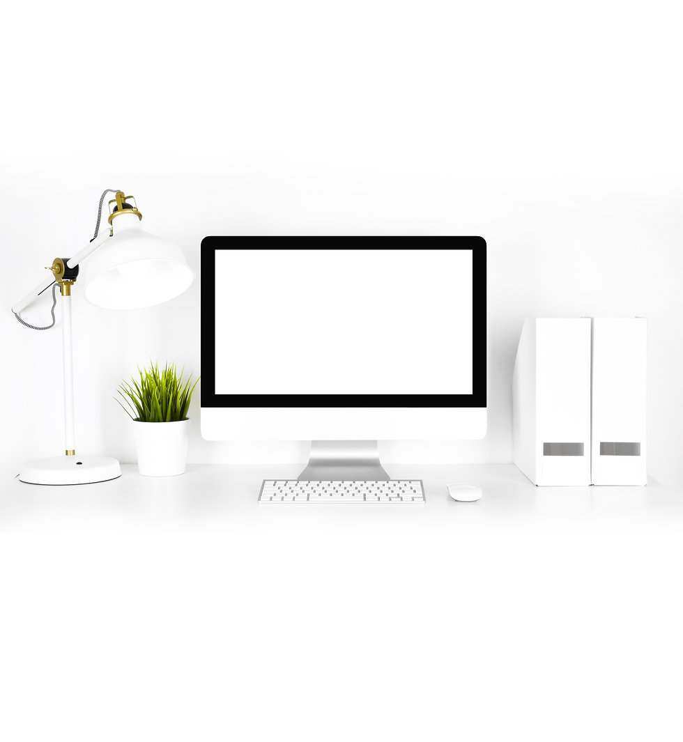 Willow Graphix & Co website design.jpg