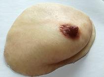人工乳房(無垢タイプ)