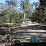 Dirt road, rattly bridge - Australian bush