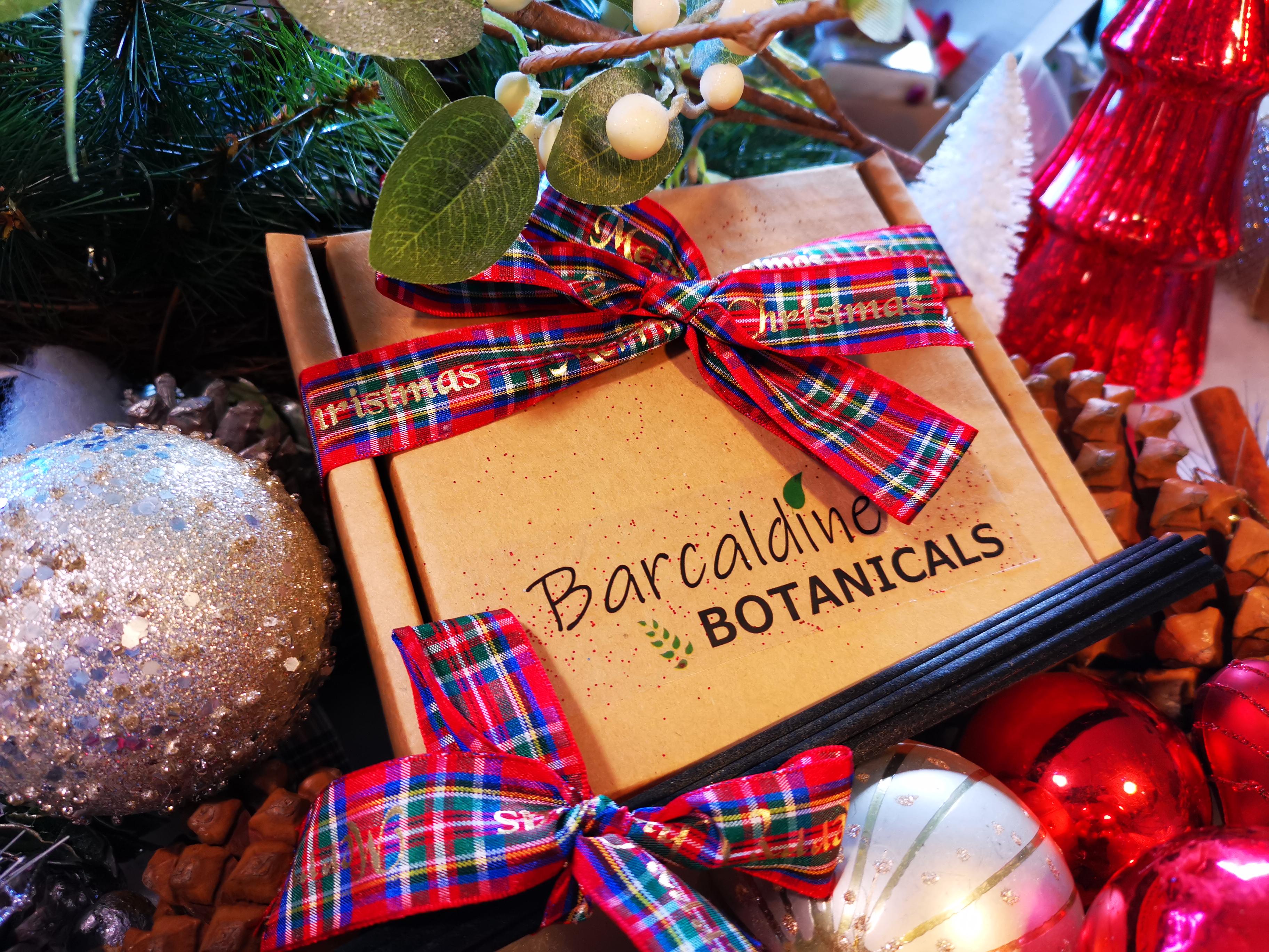 Gift box with tartan ribbon