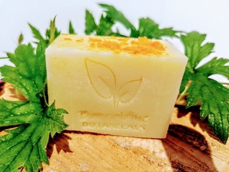 FREE Organic Cotton Soap Pouch