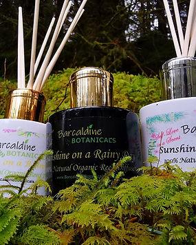 Luxury Organic Reed Diffuser