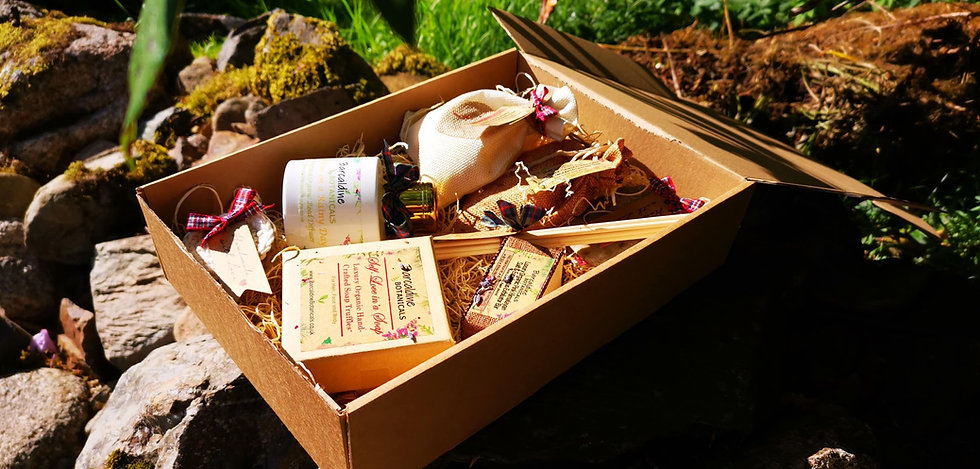 Luxury Organic Gift Set - Large