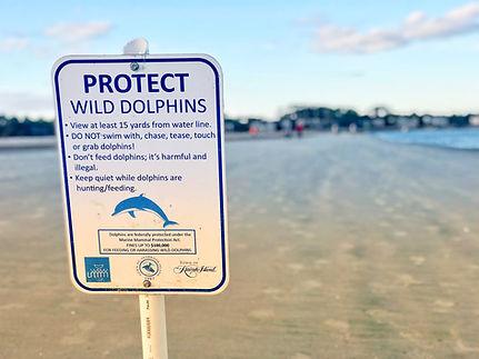 ProtectWildDolphinsSign.jpg