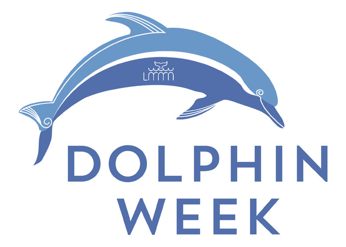 Dolphin Week.jpeg